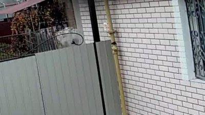 Никопольский ГорГаз тоже умеет работать (видео с камер наблюдения)