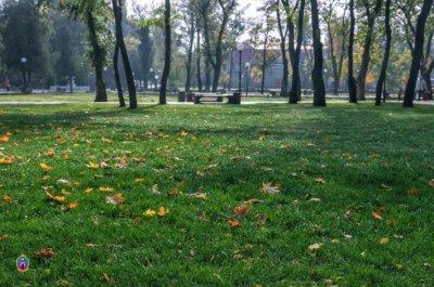 У центральному парку Покрова висаджують дерева