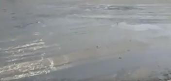 Можно ли в такую муляку ложить асфальт? (видео)