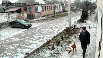 Гуляем только вместе: Я, Амбуль и Кот